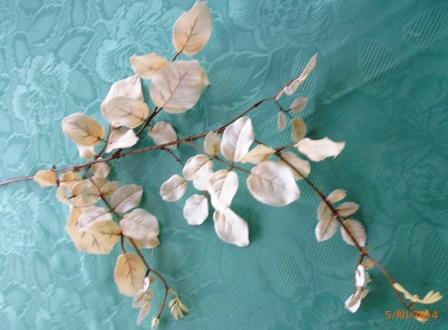 Listy růže - bílá MH91817