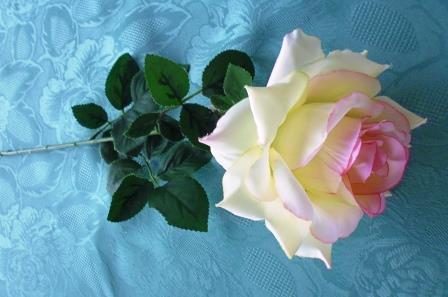 Růže čajová béžová růžový střed MH91646