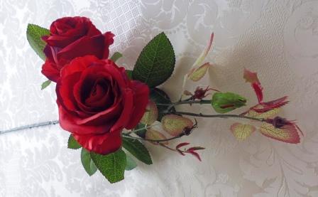 Růže dva květy s poupětem červená MH91892