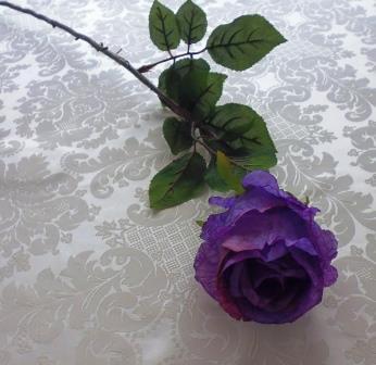 Růže poupě fialová MH91814