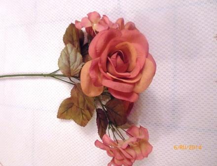 Růže rozkvetlá s hortenziemi MH91686