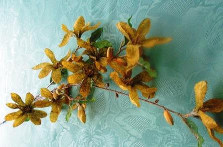 Větev květy zlatá MH91810