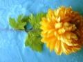 Chryzantéma žlutá MH91831