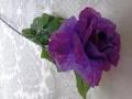 Růže rozkvetlá fialová MH91813