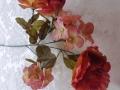 Růže s hortenziemi MH91687