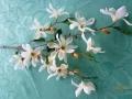 Větev květy bílá MH91810