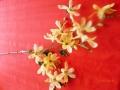 Větev květy kávová MH91810